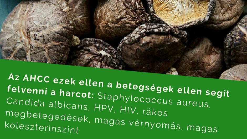 magas vérnyomás elleni gyógyszerek vízhajtókkal