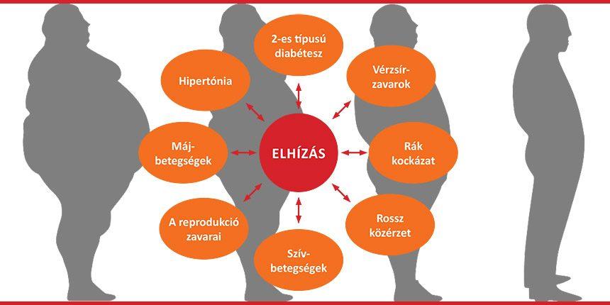 Adnak-e fogyatékosságot 2 fokú magas vérnyomás esetén magas vérnyomás hogyan kell kezelni fórum
