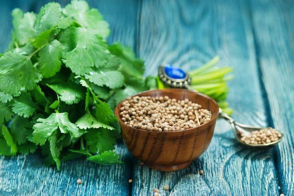 A koriander egészségügyi előnyei | Gyógyszer Nélkül