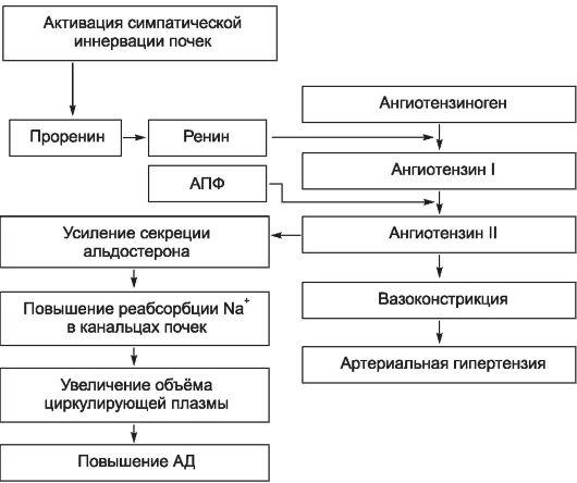 encephalitikus hipertónia magas vérnyomás gyakorisága