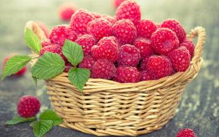 étel amely magas vérnyomást kezel hogyan lehet csökkenteni a vérnyomást magas vérnyomással