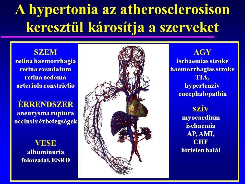 a hipertónia okát keresi