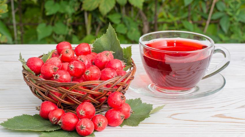 koenzim és magas vérnyomás tiazid diuretikum magas vérnyomás kezelésére