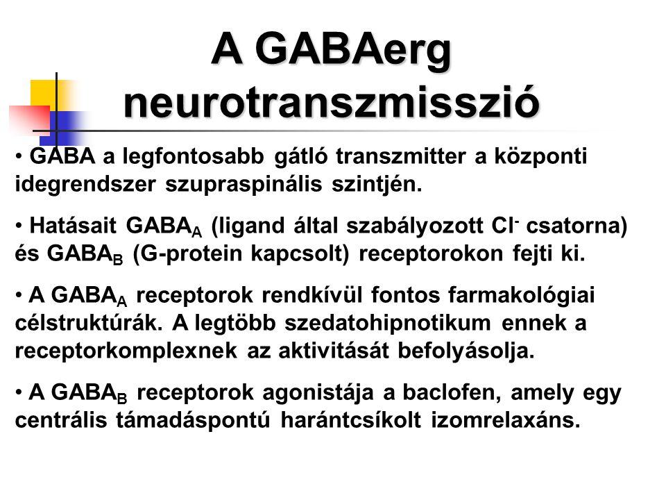 Pszichoszomatikus betegségek új megközelítésben – Csabai Márta interjú