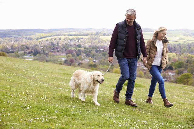 gyaloglás gyógyított magas vérnyomás homoktövis hipertónia recept