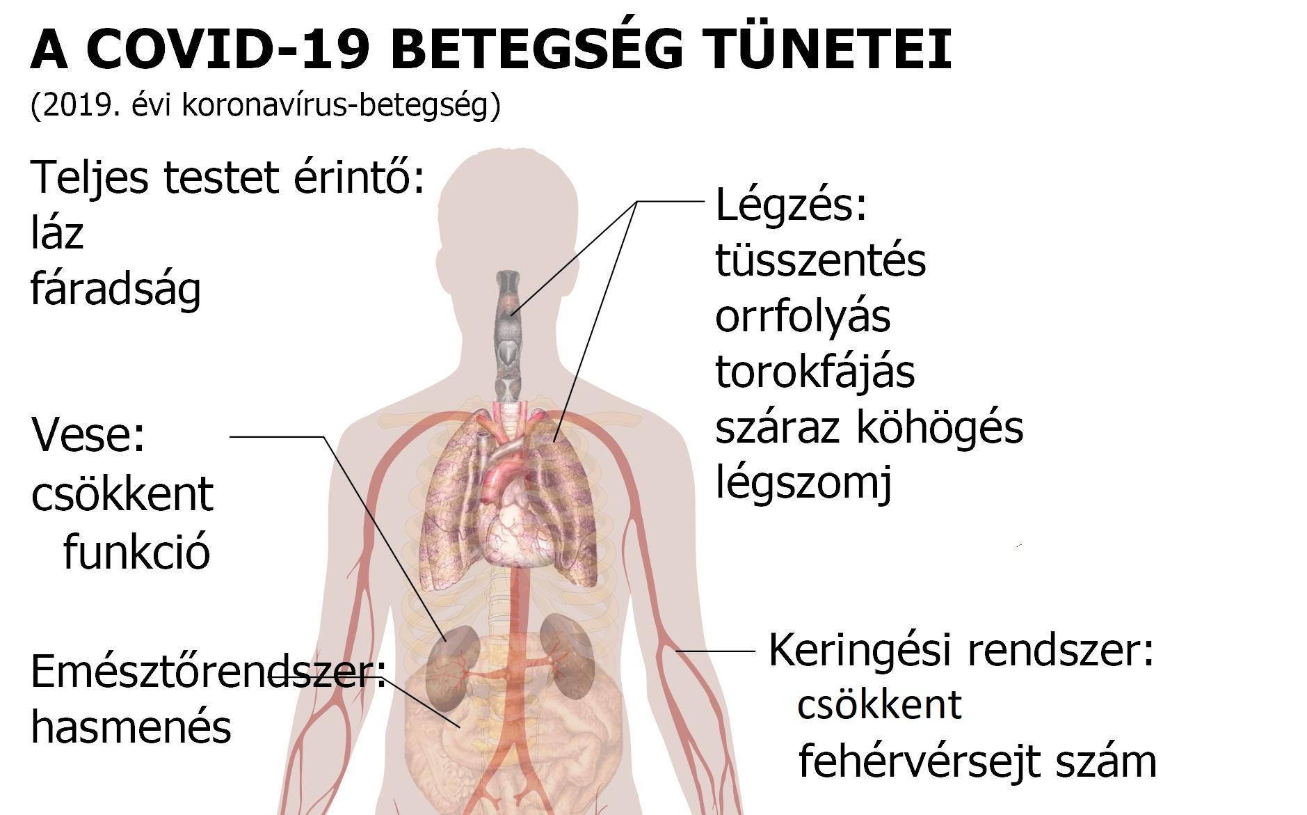 magas vérnyomás a mikrobiológia szerint 10 termékek magas vérnyomás kezelésére