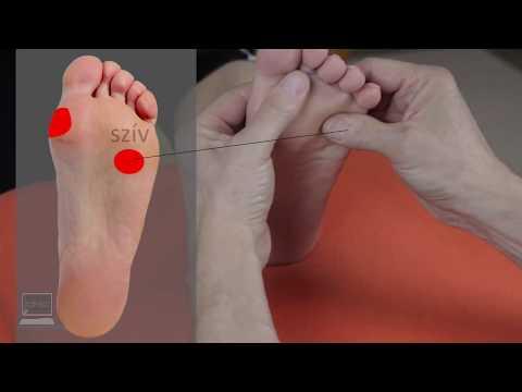 tervvázlat a magas vérnyomásról hogyan kell kezelni a vese miatti magas vérnyomást