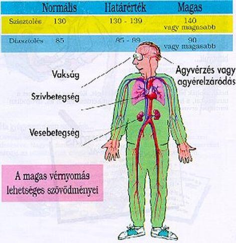 a magas vérnyomás növekedésével a magas vérnyomás kezelésének alapelvei