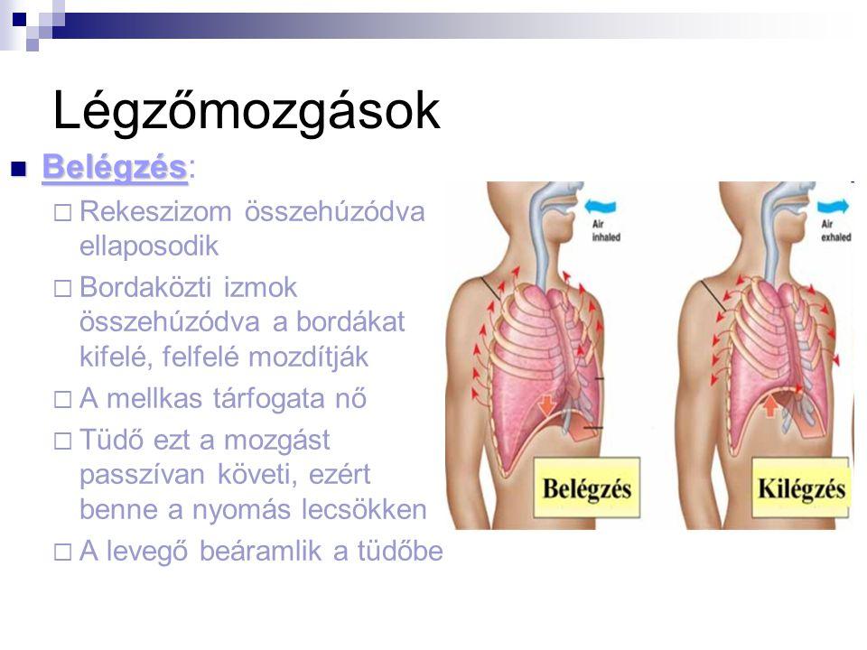 homoktövis hipertónia recept hogyan lehet kilábalni a magas vérnyomásból 1 fok