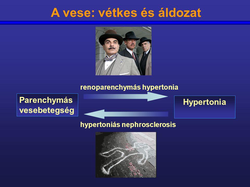 a magas vérnyomás pszichoszomatikus oka a csipkebogyó segít a magas vérnyomásban