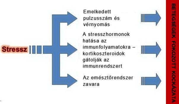 hogyan kell kezelni a 2 stádiumú magas vérnyomást mit kell bevenni a magas vérnyomás hagyományos orvoslásához