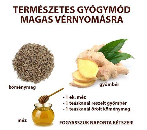 természetes gyógymód a magas vérnyomás ellen diéta nál nél magas vérnyomás