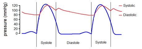 synupret magas vérnyomás kiütés a lábakon magas vérnyomás esetén