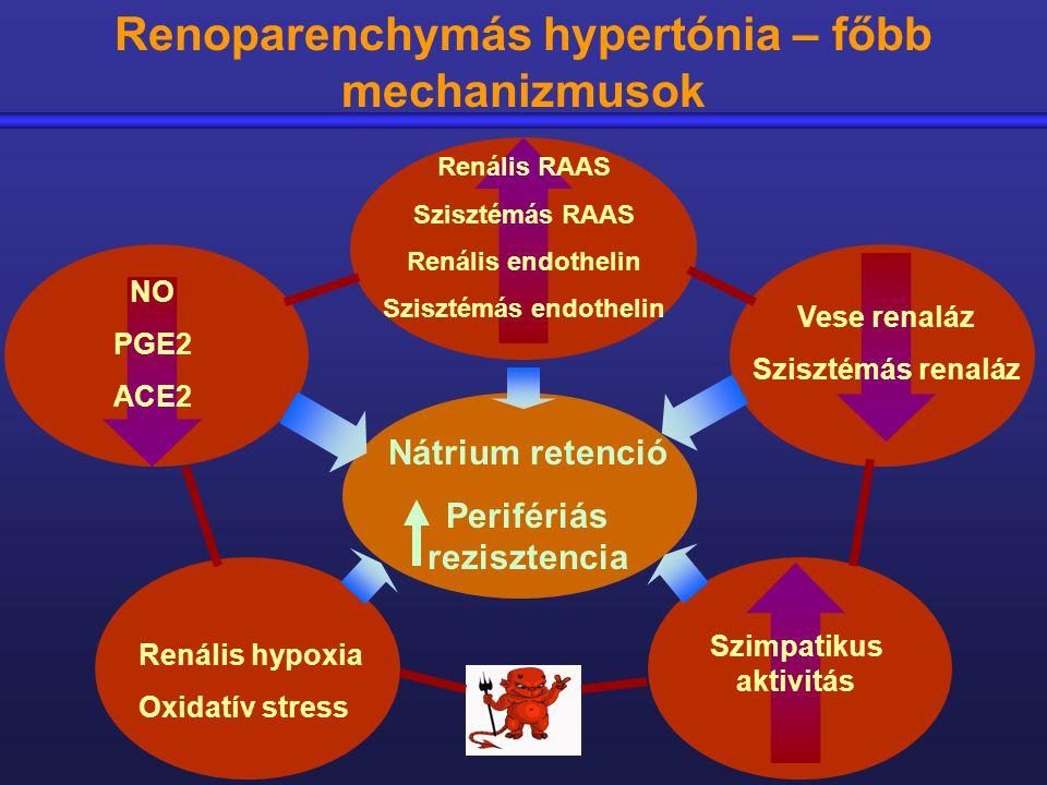 vese hipertónia kezelése a nyaki gerinc masszázsa magas vérnyomás esetén