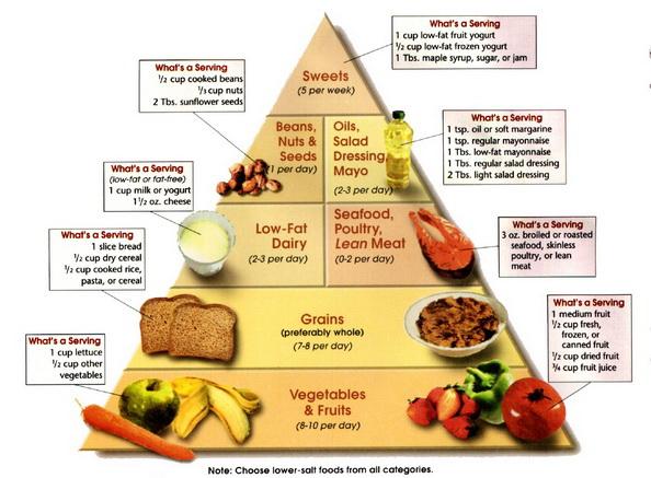 vese hipertónia táplálkozás hogyan lehet megúszni a magas vérnyomás elleni gyógyszereket